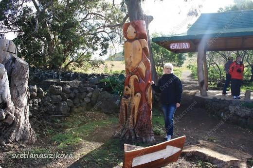 Начинается вторая часть нашего знакомства с Островом Пасхи. Это Рано-Рараку— одно из наиболее интересных мест для туристов. У подножия этого вулкана расположено около 300 моаи, различной высоты и на разной стадии готовности.  фото 2