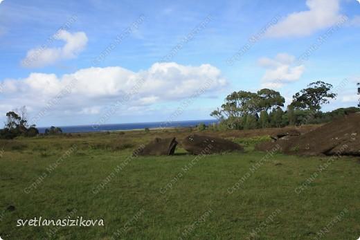 Начинается вторая часть нашего знакомства с Островом Пасхи. Это Рано-Рараку— одно из наиболее интересных мест для туристов. У подножия этого вулкана расположено около 300 моаи, различной высоты и на разной стадии готовности.  фото 3