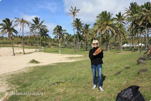 Начинается вторая часть нашего знакомства с Островом Пасхи. Это Рано-Рараку— одно из наиболее интересных мест для туристов. У подножия этого вулкана расположено около 300 моаи, различной высоты и на разной стадии готовности.  фото 12