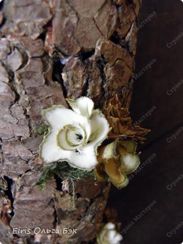 Вот такой душевный наборчик я создавала почти неделю... Очень мне понравились цветочки из веточек по отдельности...Тогда можно их  по отдельности рассмотреть и полюбоваться...Это идея пришла после поста, где я тестировала ветки и описывала  какие цветочки из них получаются...Посмотреть можно здесь... http://stranamasterov.ru/node/238102  фото 9