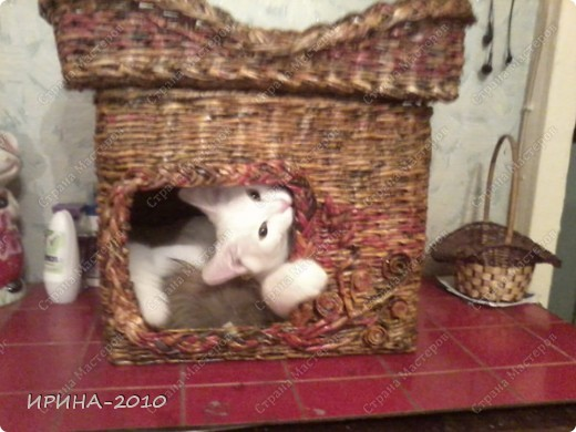 домик для котейки в подарок(на д.рождение хозяйки) фото 1