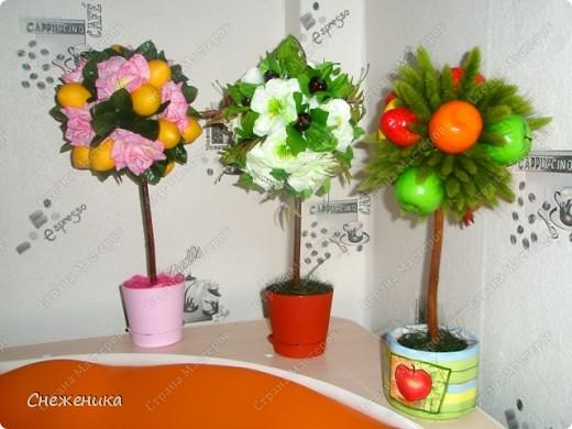 Вот они,мои любимчики-тройняшки))) фото 1