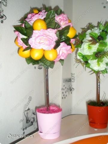 Вот они,мои любимчики-тройняшки))) фото 4