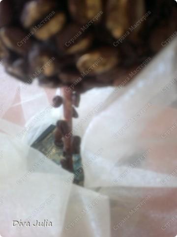 Кофейное дерево, конфетная корзинка фото 4