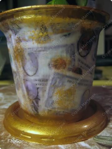 """Для денежного деревца денежный мотив. Надеюсь приживется и будет расти. Отросток был добыт """"по правилам""""))) фото 2"""