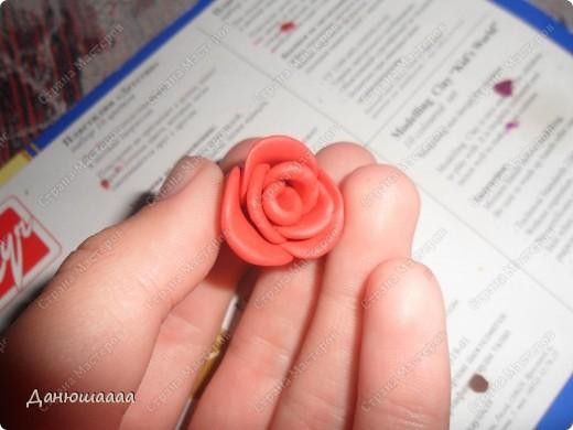 Вот какая розочка получилась у меня из пластилина!!!Правда наяву она намного темнее)))) фото 6