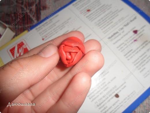 Вот какая розочка получилась у меня из пластилина!!!Правда наяву она намного темнее)))) фото 7
