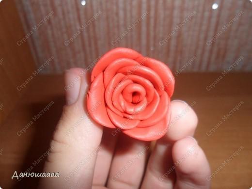 Вот какая розочка получилась у меня из пластилина!!!Правда наяву она намного темнее)))) фото 8