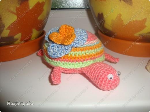 Черепашка Марта! фото 2