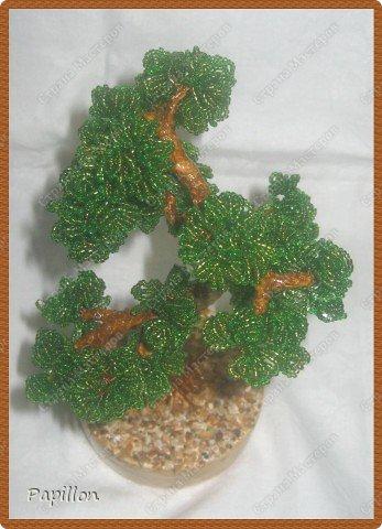 """Это мое первое дерево. Хотела назвать его """"Воспоминание о море"""", т.к. началось его изготовление именно там. фото 2"""
