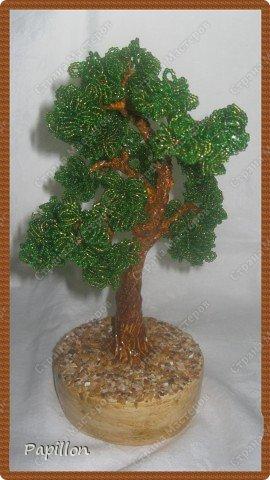 """Это мое первое дерево. Хотела назвать его """"Воспоминание о море"""", т.к. началось его изготовление именно там. фото 1"""