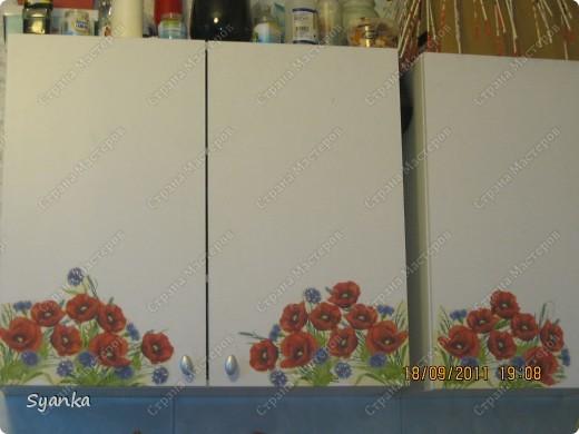 Украшаю кухню цветами, маками. (Декупаж ) фото 1
