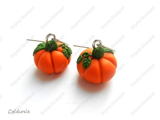 серьги-тыковки)каждая размером с 1рублевую монету))) фото 1