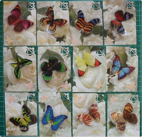 Сделала еще партию карточек с бабочками.  Приглашаю кредиторов, taivis, ШМыГа, Sjusen.   фото 1