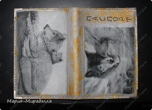 Моя первая обложка и первая распечатка.  фото 3