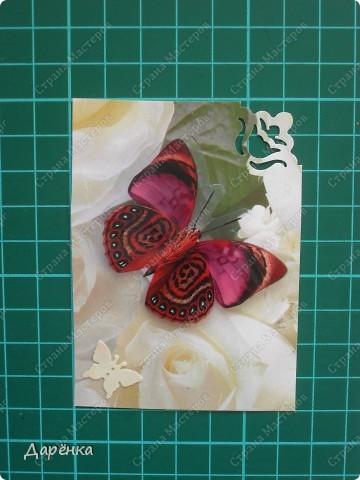 Сделала еще партию карточек с бабочками.  Приглашаю кредиторов, taivis, ШМыГа, Sjusen.   фото 2