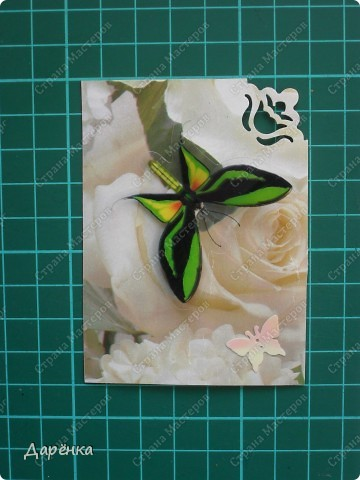 Сделала еще партию карточек с бабочками.  Приглашаю кредиторов, taivis, ШМыГа, Sjusen.   фото 6