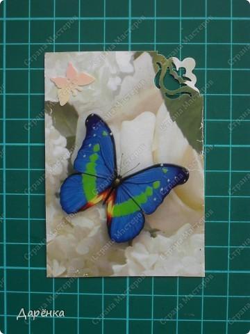 Сделала еще партию карточек с бабочками.  Приглашаю кредиторов, taivis, ШМыГа, Sjusen.   фото 11