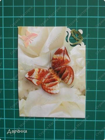 Сделала еще партию карточек с бабочками.  Приглашаю кредиторов, taivis, ШМыГа, Sjusen.   фото 12