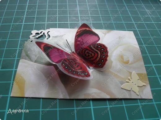 Сделала еще партию карточек с бабочками.  Приглашаю кредиторов, taivis, ШМыГа, Sjusen.   фото 14