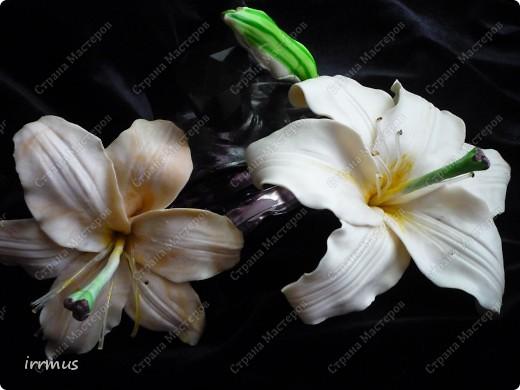лепные цветы поверх заколки,для скрепления промазанной перед работой и обжигом клеем ПВА фото 7