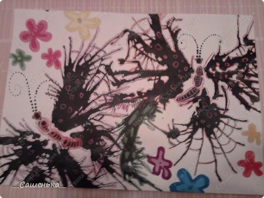 Бабочки) фото 2