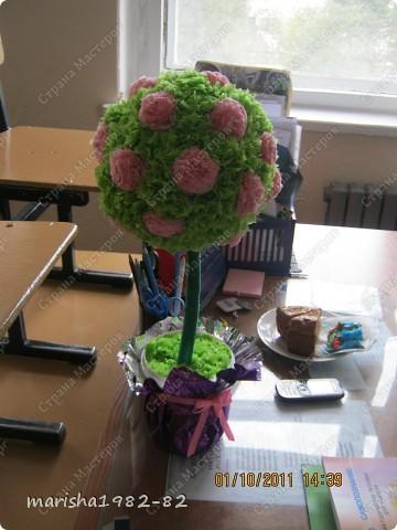 Подарили деревце любимой учительнице на День учителя! фото 2