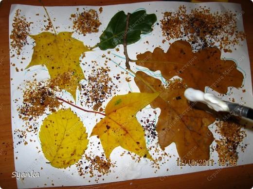 Осенняя пора!!  фото 6