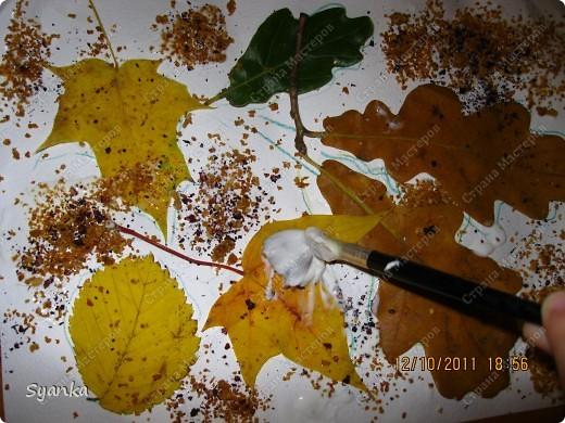 Осенняя пора!!  фото 7