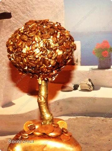 Золотое кофейное дерево! фото 6