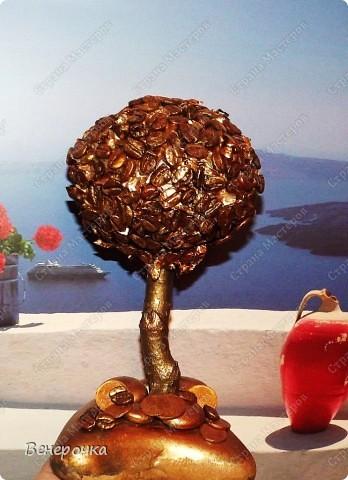 Золотое кофейное дерево! фото 7