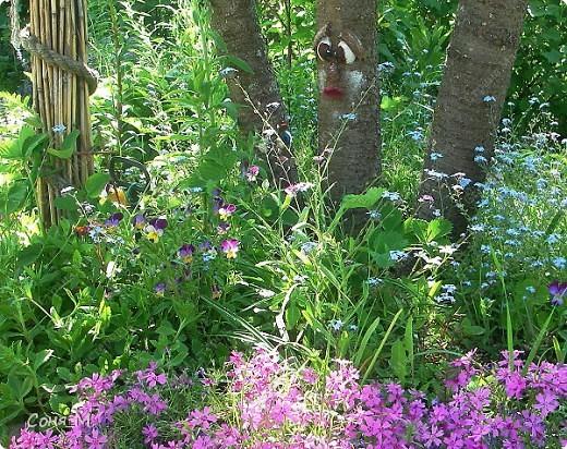 В саду фото 2