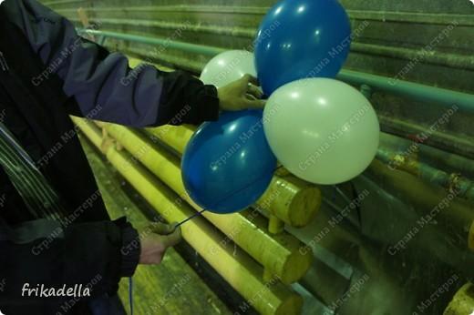 Дорогие друзья! Представляю вашему вниманию иллюстрированный курс по изготовлению гирлянды из воздушных шаров. Нам потребуются шары диаметром 20-25 см (10 или 12 дюймов) фото 12