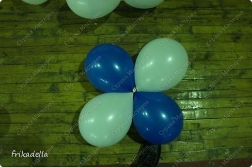 Дорогие друзья! Представляю вашему вниманию иллюстрированный курс по изготовлению гирлянды из воздушных шаров.  Нам потребуются шары диаметром 20-25 см (10 или 12 дюймов)  фото 8