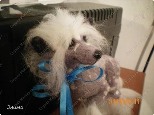 Голая китайская хохлатая собачка в исполнении моей сестры Даши.  Сваляна из мериносовой шерсти, нос - полимерная глина, глазки стеклянные. (собственно ради применения новых глазок работа затевалась:))))) фото 4