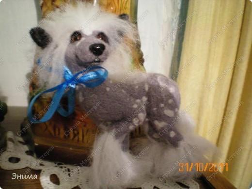 Голая китайская хохлатая собачка в исполнении моей сестры Даши.  Сваляна из мериносовой шерсти, нос - полимерная глина, глазки стеклянные. (собственно ради применения новых глазок работа затевалась:))))) фото 6