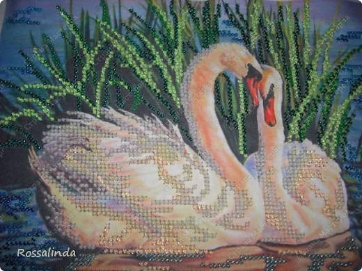 Вышивки с бисером лебеди
