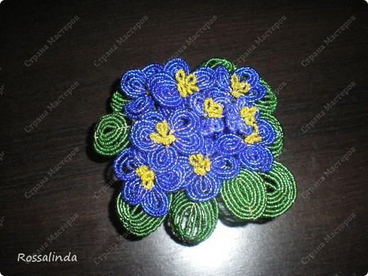 Мои любимые цветы фото 4