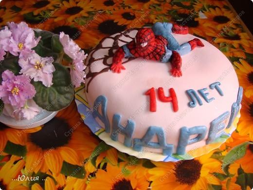 """Торт """" человек паук """"  старшенькому сыну исполнилось 14 лет... как время летит !!!!!! фото 1"""