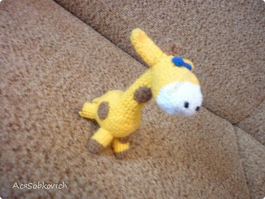 Это первый жирафик Солнышко))) фото 1