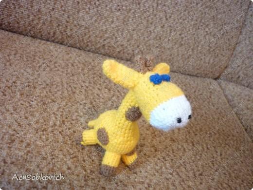 Это первый жирафик Солнышко))) фото 2