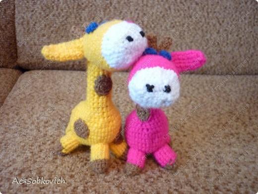 Это первый жирафик Солнышко))) фото 5