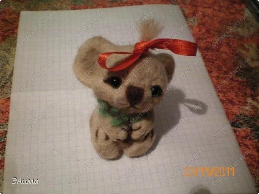 Очередное Дашино творение. Все коалы серые, а у нас живёт девочка песочного цвета. фото 6