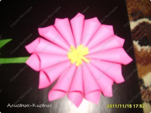 """Цветок. в """"полный рост"""":) фото 2"""