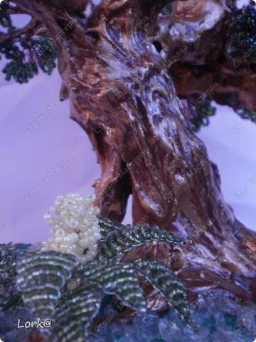 Цветущий бонсай фото 5