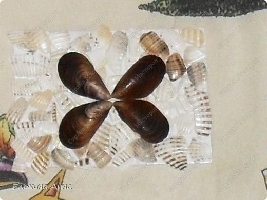 Вот они)) Бабочка и без названия))) фото 2
