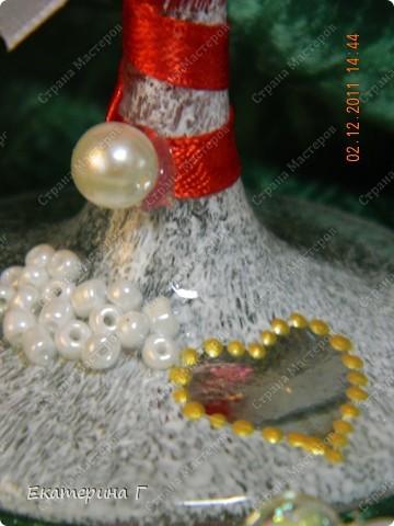 Лебеди-символ верности. фото 3