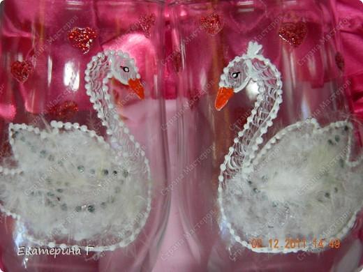 Лебеди-символ верности. фото 5