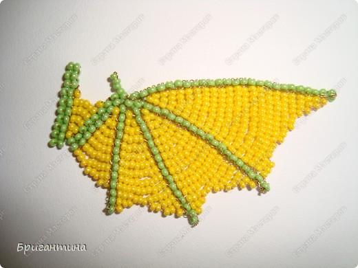 Крылья дракона бисер