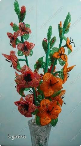 Гладиолусы - это мои самые любимые цветы. фото 1